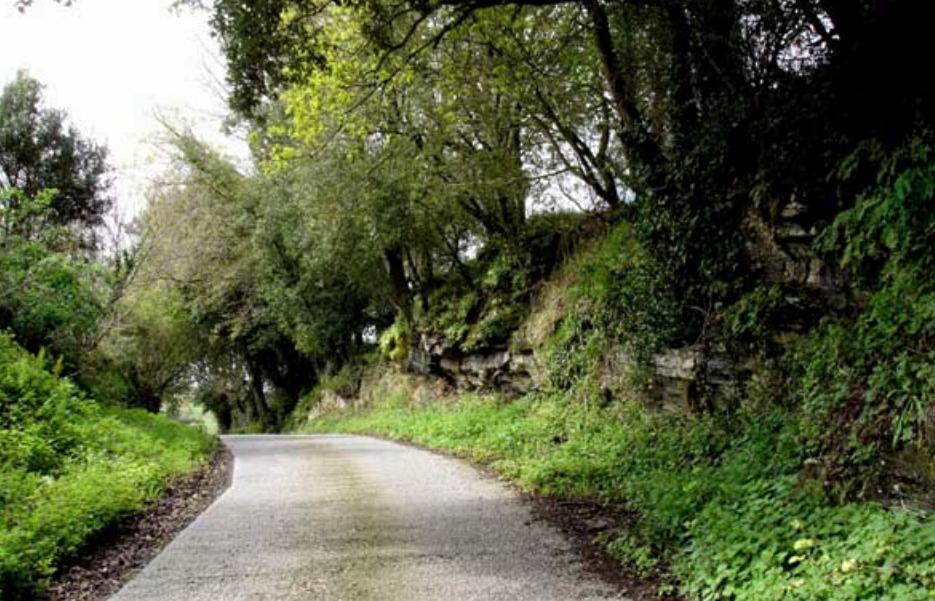imatge 2